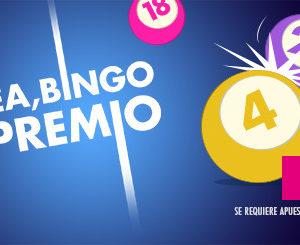 hasta 3000€ de premio canal bingo