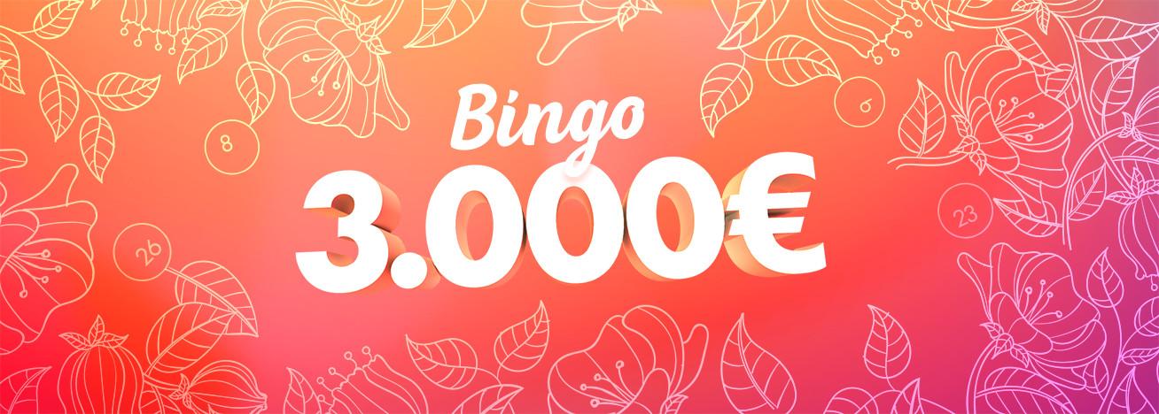 bingo 3.000€